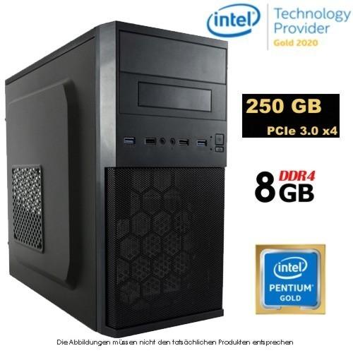 BWZ Entry-Micro Intel G6400/250GB SSD/8GB