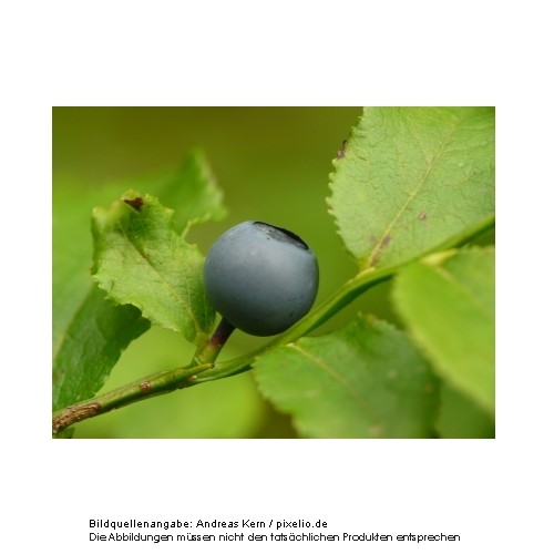 Inawera Heidelbeere Aroma 10ml